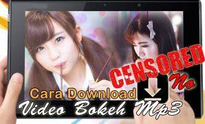 Video Bokeh MP3